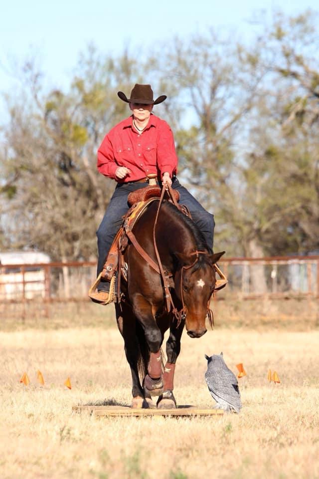 Retta Collins riding horse